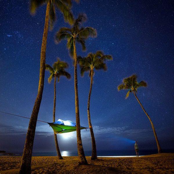 Tentsile-night-Hammock-palm-Tree-Tent-beach
